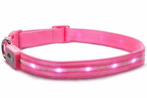 collar rosado de seguridad bed blazin
