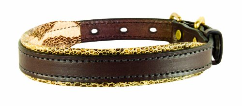 collar perri 's color serpiente con café de cuero acolchado para perro