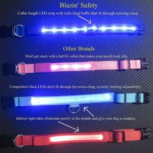 collares de seguridad led blazin